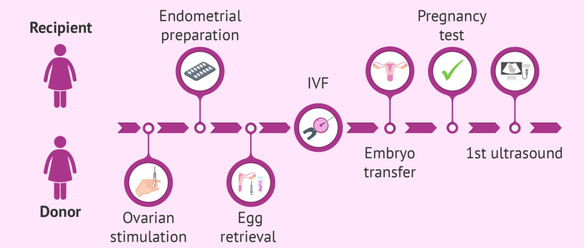 IVF-with-Egg-Donor-1200x510.png